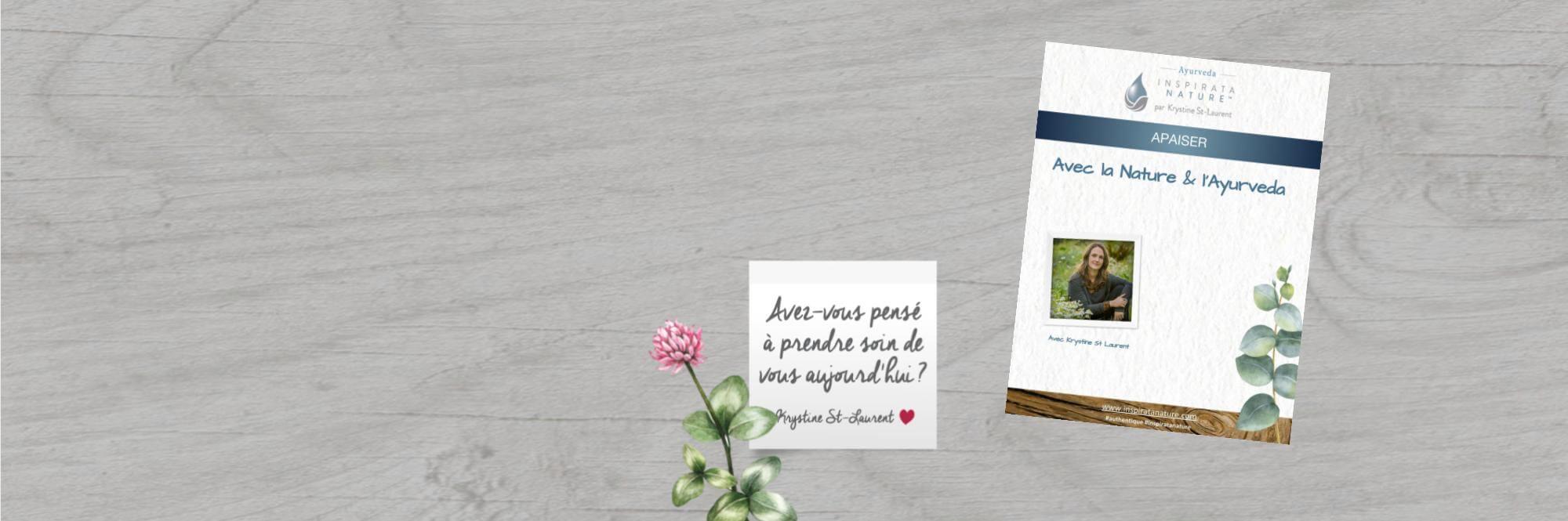 Infolettre Krystine St-Laurent