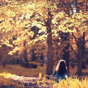 Se connecter à la nature avec ses 5 sens