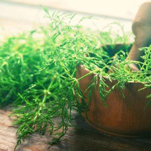plantes qui aident à éliminer